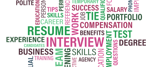 Word diagram relating to interview, skills, experience, team, insurance, programmes etc